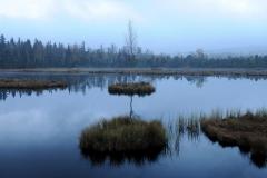 šumava-1-2014